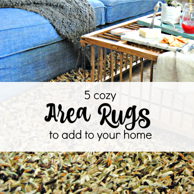 6 Cozy Area Rugs to add to your home